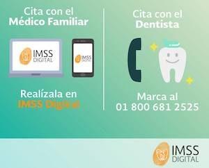 Cita Medica Digital Imss Cita Y Turnos